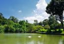 Chín việc nên thực hiện khi tới Singapore